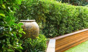 Tim Samuel Design | Croydon Garden and Landscape