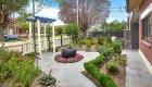 Tim Samuel Design | Front Garden Strathfield